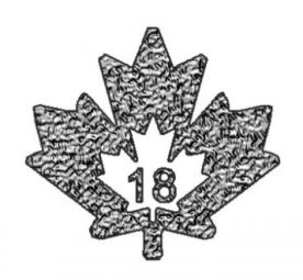 Maple Leaf Incuse 1 Unze / 100 Stück