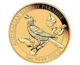 100 $ Bird of Paradise 2019