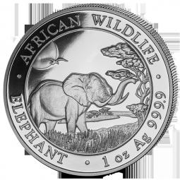 Somalia Elefant 1 Unze / 20er Tube