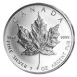 100 x Maple Leaf 1 oz zur Lagerung
