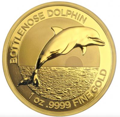 100 $ Bottlenose Dolphin 2019